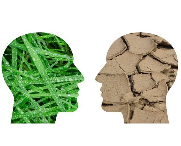 25ena Cimera del Clima Nacions Unides